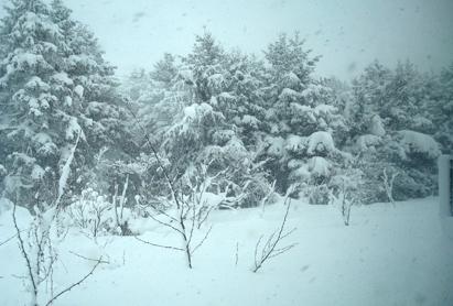 0107雪景色.jpg