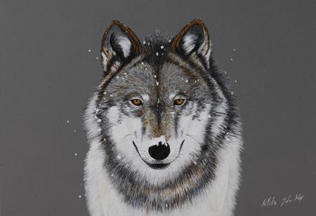 雪の中狼1.jpg
